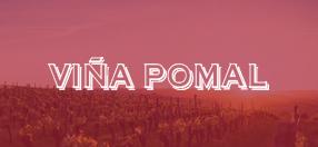 Portfolio eStudio34 Viña Pomal